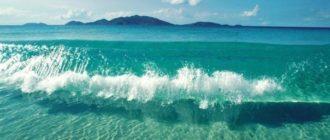Прикольные картинки «Хочу на море» (42 фото)