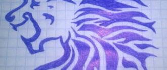 Красивые рисунки ручкой для срисовки (28 фото)