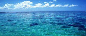 Красивые картинки про океан (36 фото)