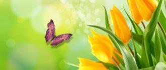 Красивые картинки весна на рабочий стол (38 фото)