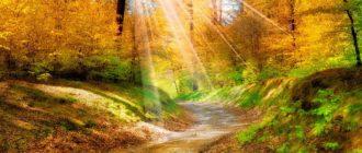 Картинки «Красавица Осень» (36 фото)