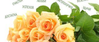 Картинки поздравления «С Днем Рождения» (42 фото)