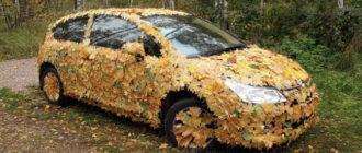 Прикольные картинки про осень (36 фото)