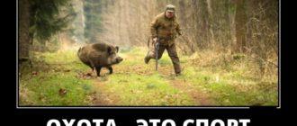 Прикольные картинки про охотников с надписью (40 фото)