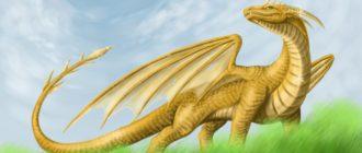 Красивые картинки про драконов (37 фото)