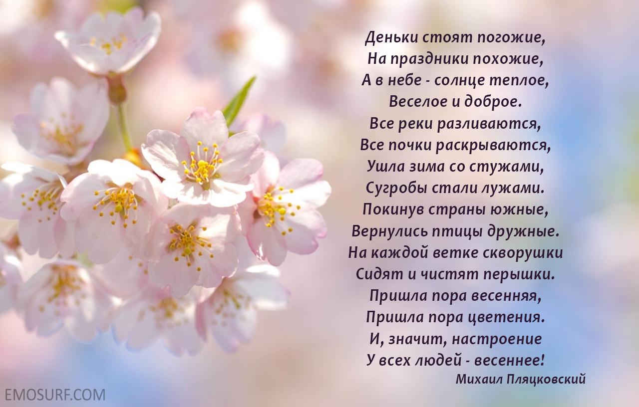 приятные картинки со стихами весна так все телом