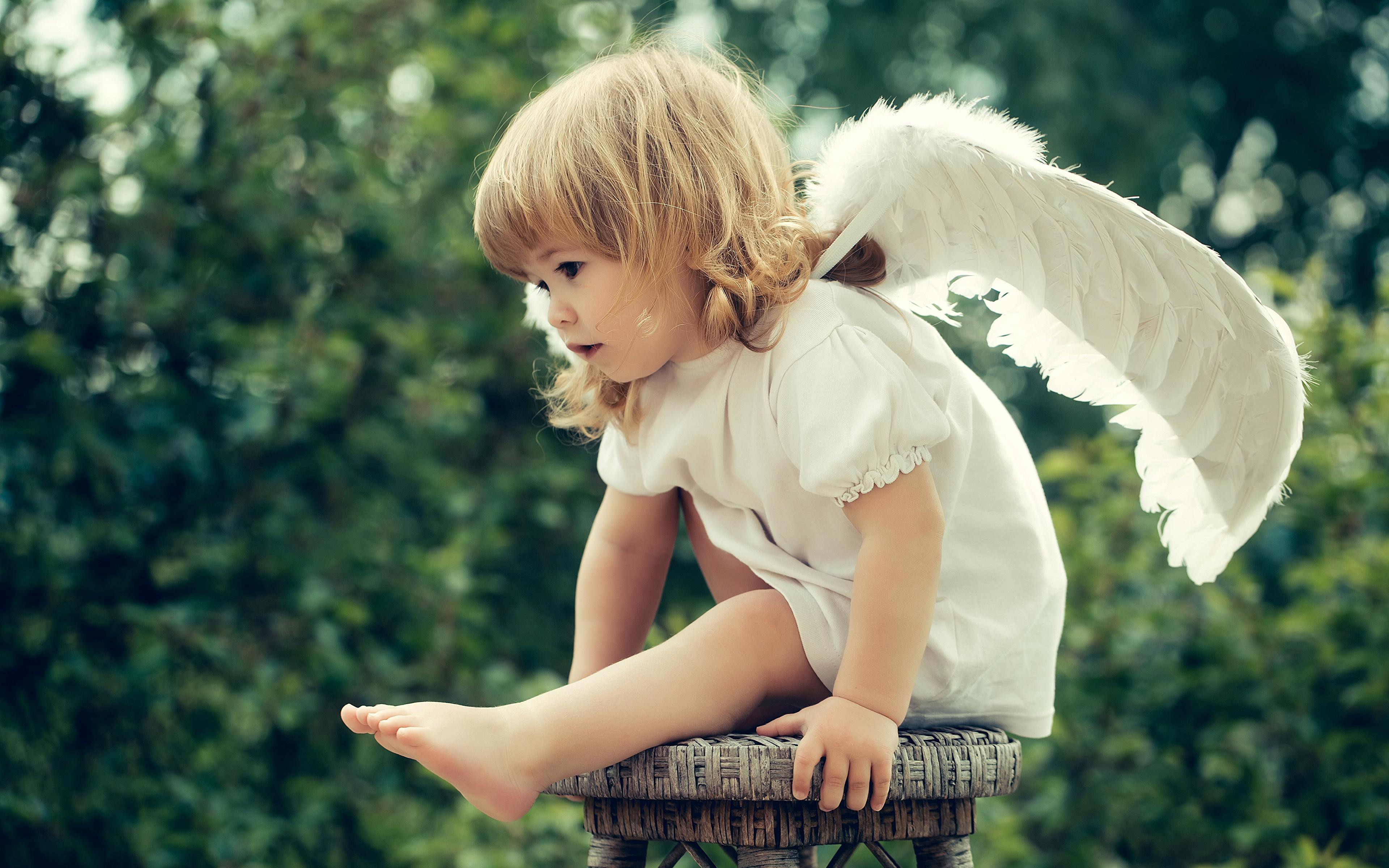 всех есть красивые фотографии ангела рецепт