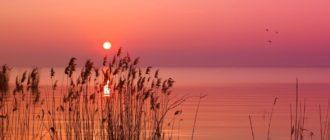 Красивые картинки утро (35 фото)