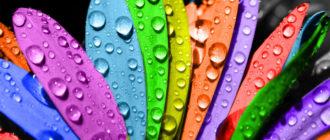 Красивые картинки цветные (36 фото)