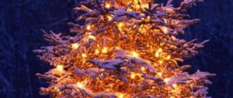 Красивые картинки зимние на телефон (36 фото)