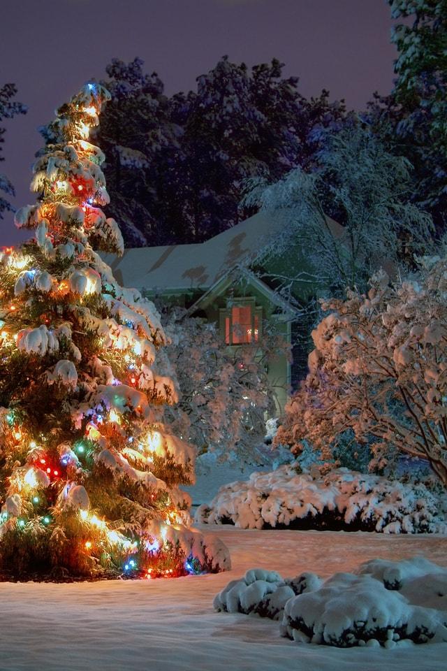 фоторезистор зимние новогодние картинки на телефон заключил свой