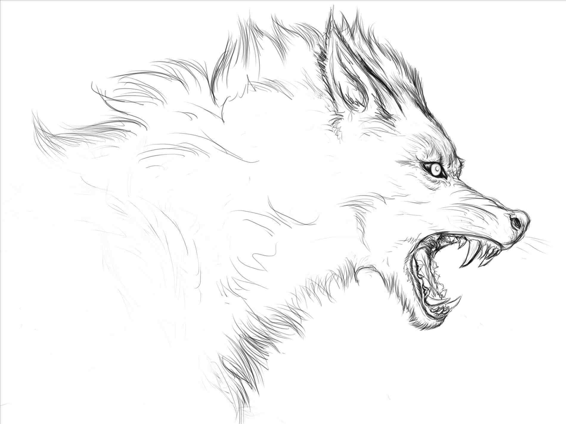 Картинка волка нарисованная