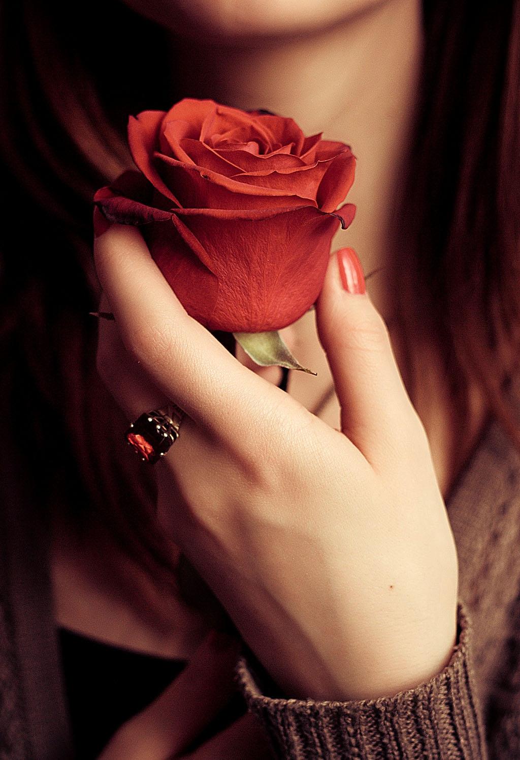 Роза в руках картинки на аву