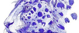 Рисунки для срисовки ручкой (30 фото)