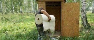 Прикольные картинки про туалет (30 фото)