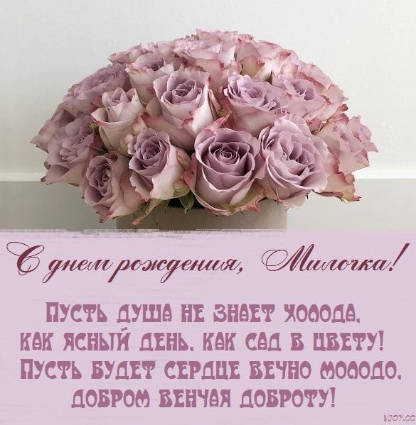Прекрасный День Для Милой Милы