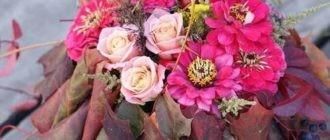Красивые картинки с осенними цветами (41 фото)