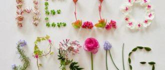 Красивые картинки «Привет, весна!» (39 фото)