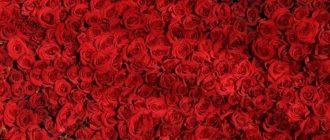 Картинки красные (49 фото)