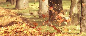 Красивые картинки осень на рабочий стол (30 фото)