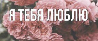 Любовные картинки — Клим, я тебя люблю! (30 фото)