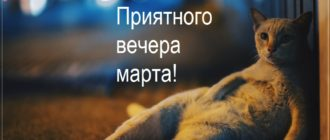 Картинки — Добрый вечер Марта! (34 фото)